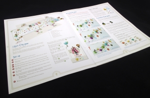 Tokaido Rules booklet