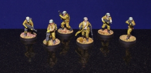 Rebel Troopers - Example Unit